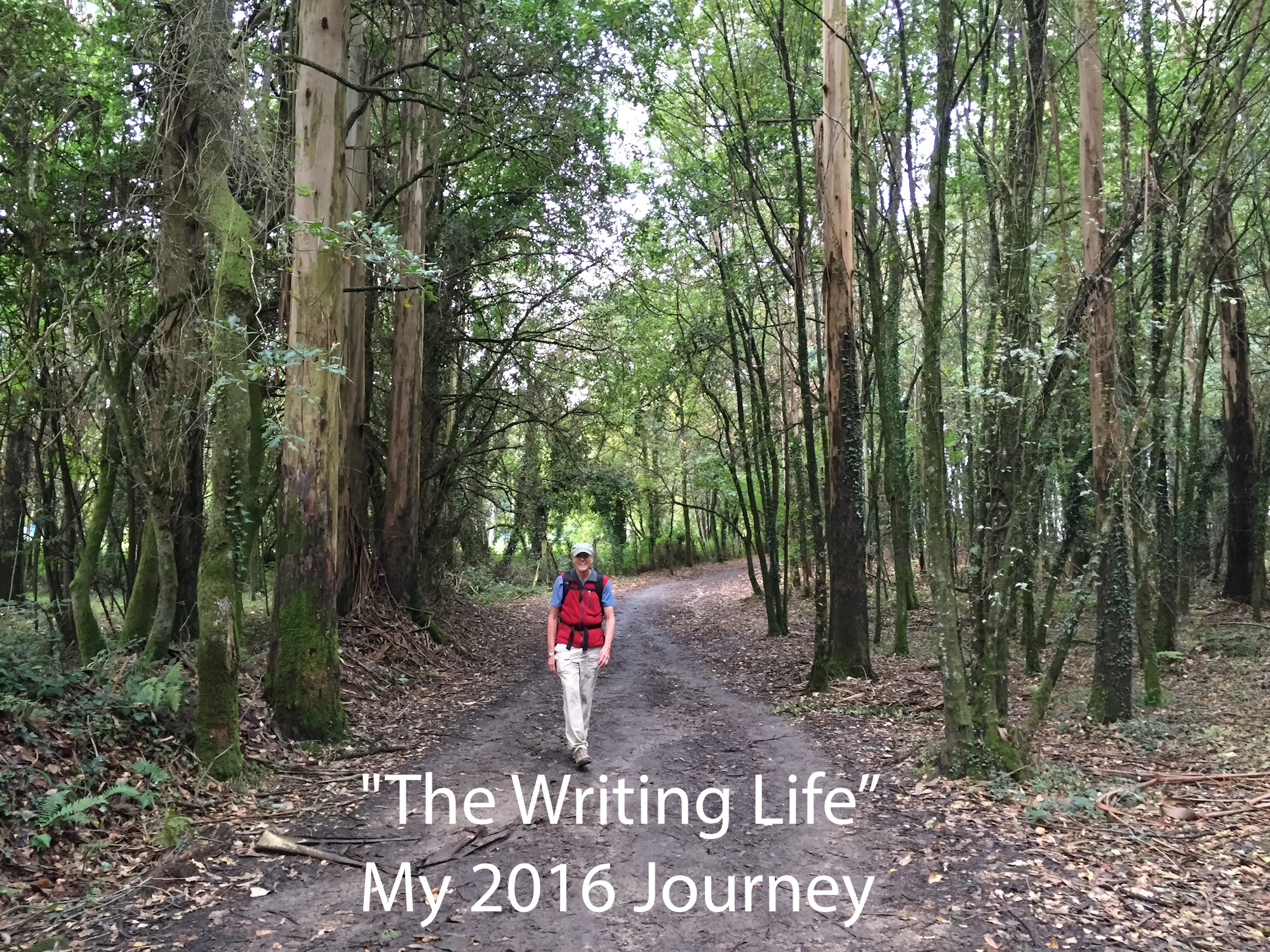 the writing life journey